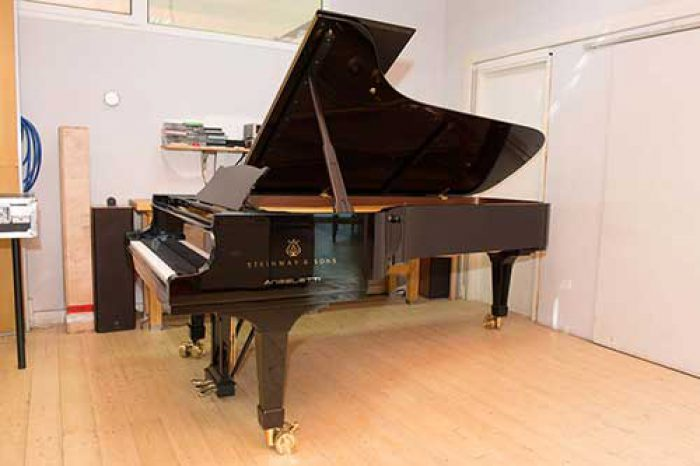 Steinway & Sons mod. D